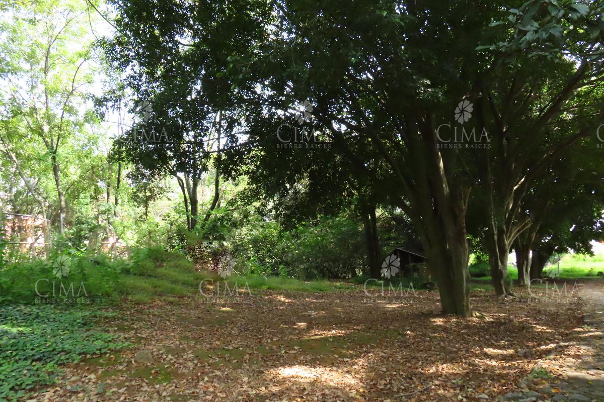 Foto Terreno en Venta en  Pueblo Chamilpa,  Cuernavaca  Venta terreno a cinco minutos de Universidad - T33