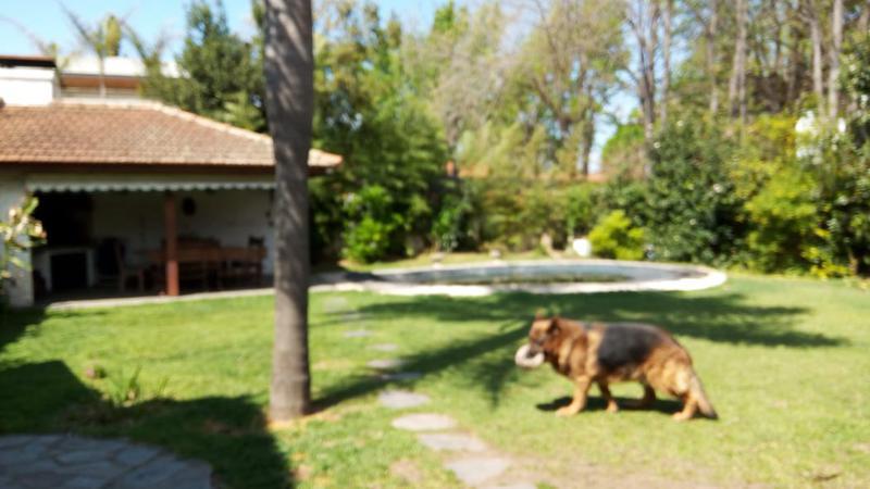 Foto Casa en Alquiler temporario en  Beccar,  San Isidro  Uspallata al 1300