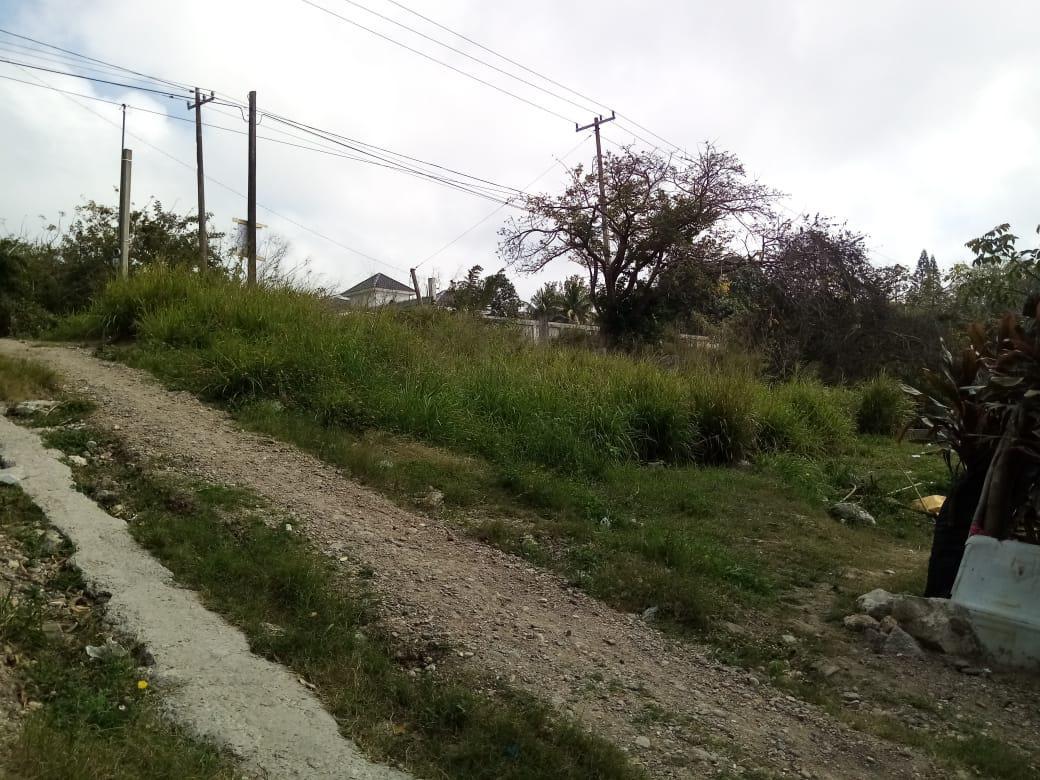 Foto Terreno en Venta en  Pueblo Viejo ,  Veracruz  Vista Hermosa