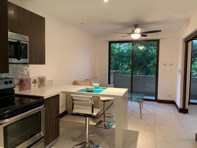 Foto Departamento en Renta en  Pozos,  Santa Ana  Santa Ana/  Amueblado/ 1 habitación/ Tipo Resort