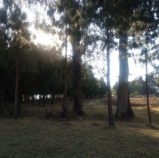 Foto Terreno en Venta en  Villa Victoria ,  Edo. de México  Terreno en Venta, Villa Victoria