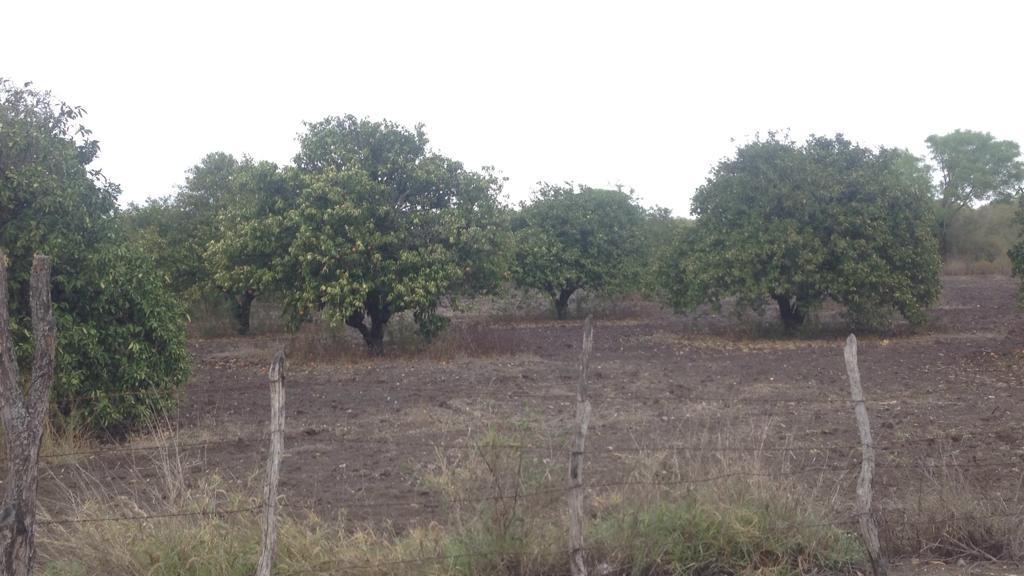 Foto Terreno en Venta en  Cadereyta Jiménez ,  Nuevo León  Ejido Santa Isabel y Dolores