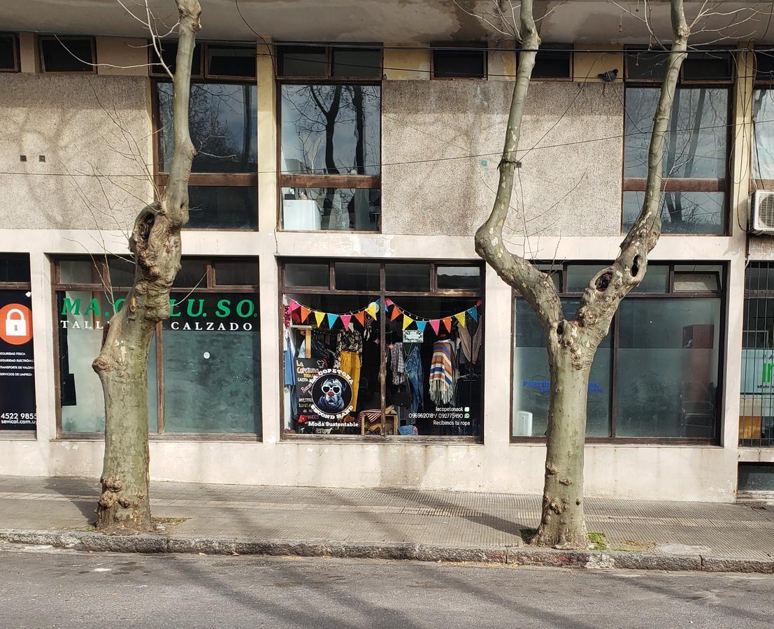 Foto Local en Venta en  Colonia del Sacramento ,  Colonia  2 Locales Comerciales sobre Alberto Méndez