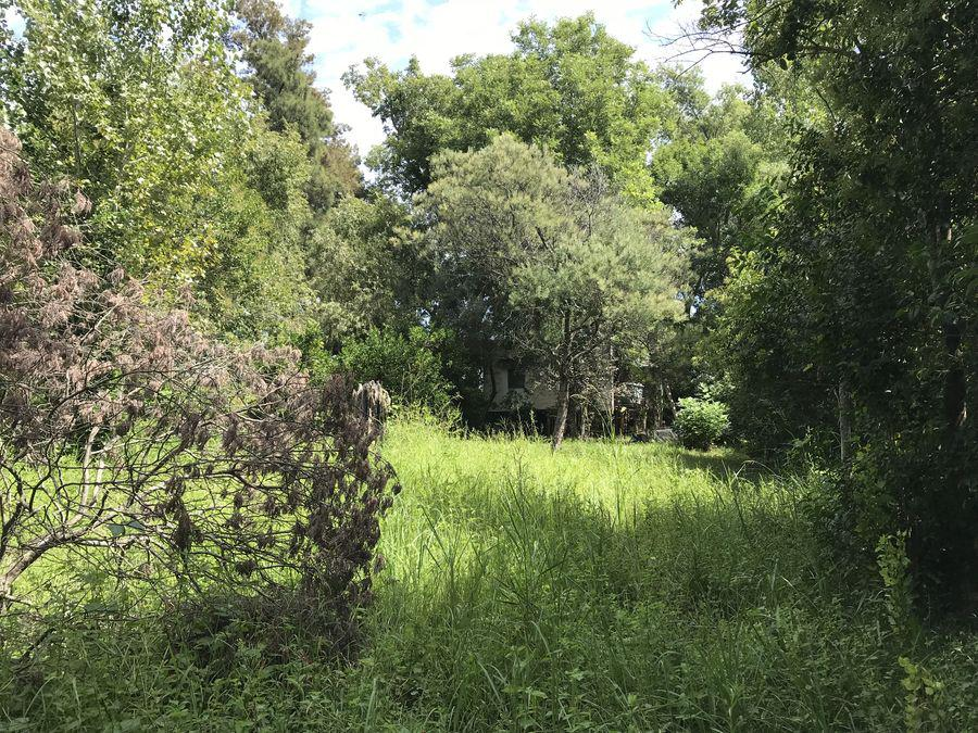 Foto Quinta en Venta en  Paraná Miní,  Zona Delta San Fernando  Paraná Miní: Fracción 247 -  Parcela 2 A.