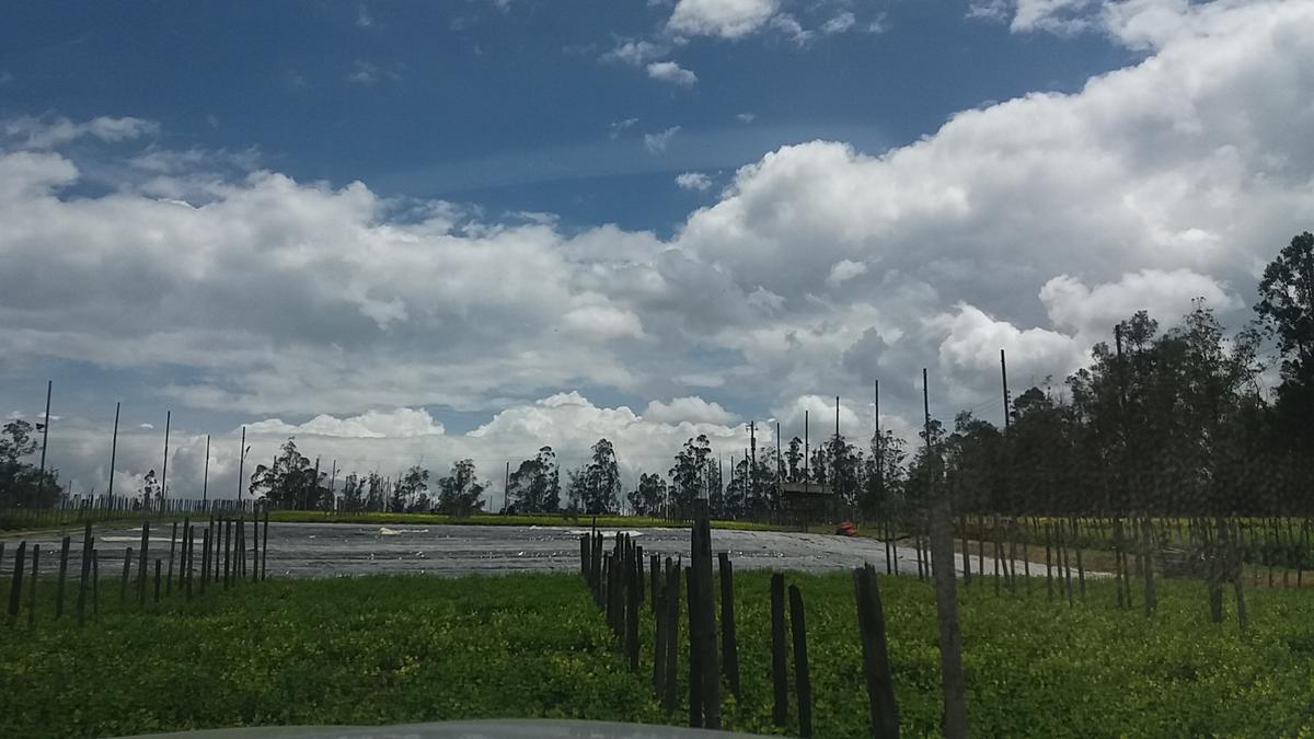Foto Terreno en Venta en  Checa,  Quito  Checa, terreno plano, con vista, 67.764 m2 a $35/m2