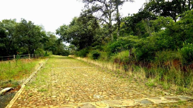 Foto Quinta en Venta en  Rancho o rancheria Tenguecho,  Tangancícuaro  Terreno Los Encinos