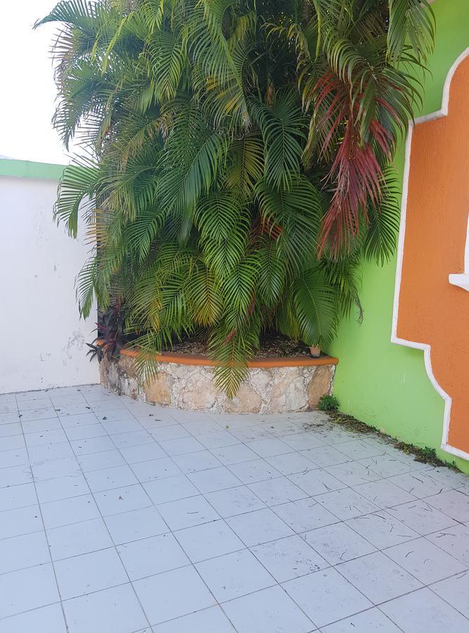 Foto Departamento en Renta en  Miguel Alemán,  Mérida  departamento en renta en merida, en la Alemán, tipo loft amueblado
