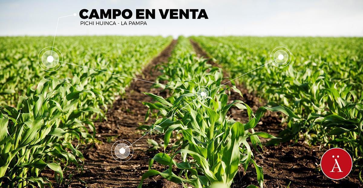 Foto Campo en Venta en  Pichi Huinca,  Rancul  Pichi Huinca