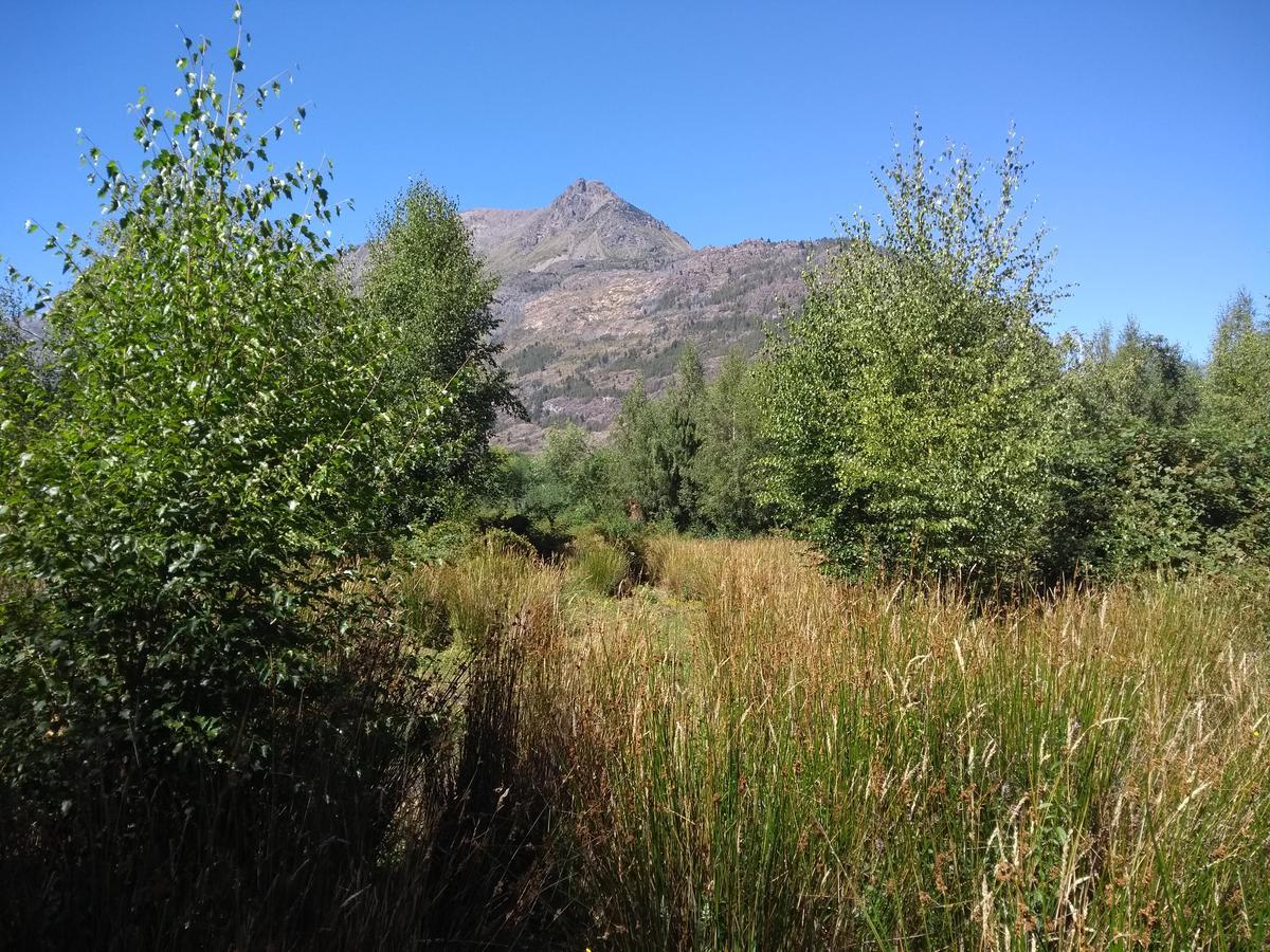 Foto Campo en Venta |  en  Ruta 40,  El Hoyo  Ruta Nacional 40, El Hoyo