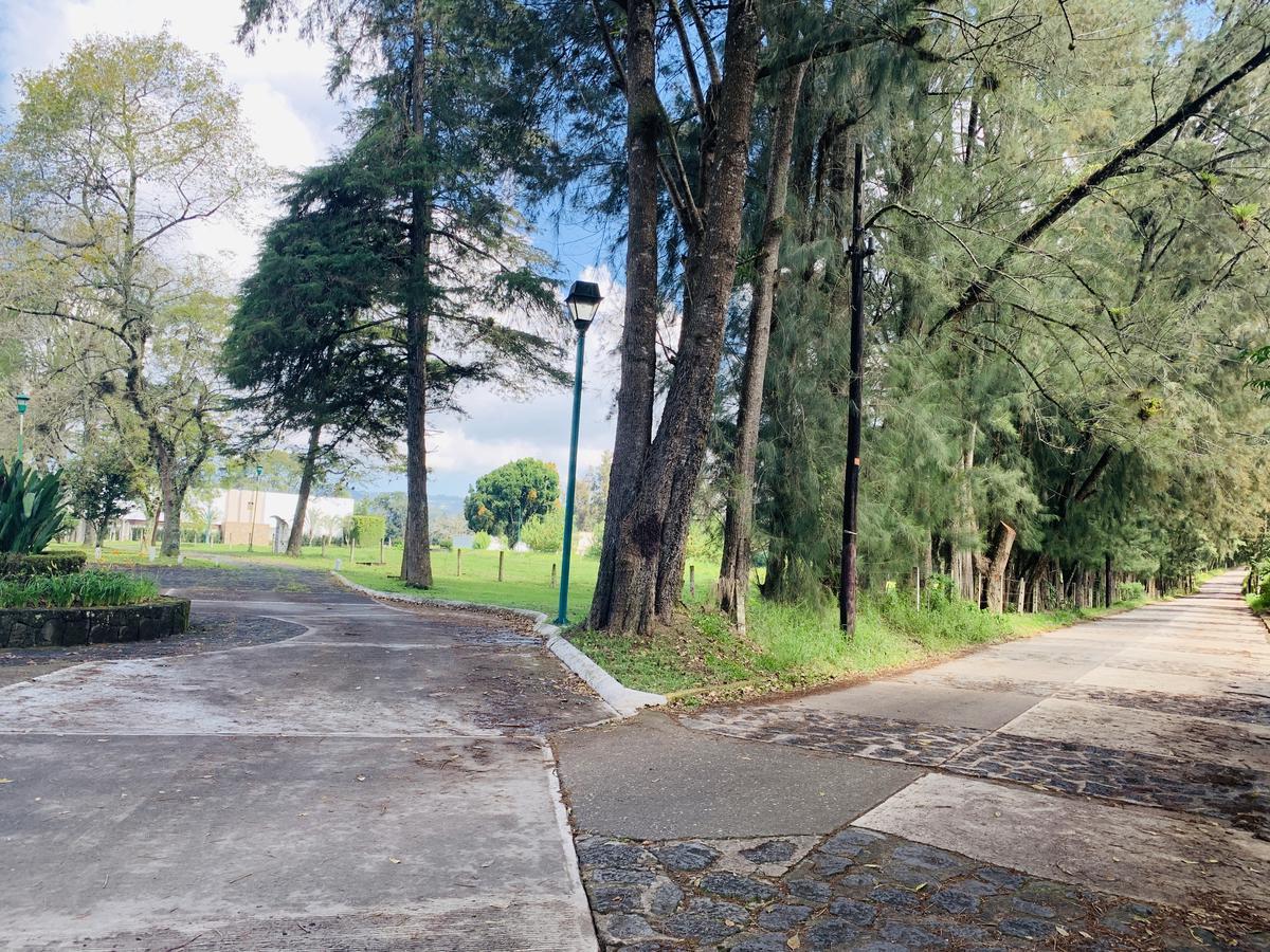 Foto Terreno en Venta en  Fraccionamiento Coapexpan,  Xalapa  Terreno en Venta en Xalapa Junto a Coapexpan, El Manantial Lote 19