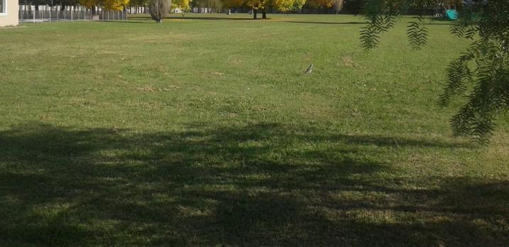 Foto Terreno en Venta en  Pilar ,  G.B.A. Zona Norte  Venta de lote en Haras del Sol  muy buena ubicacion