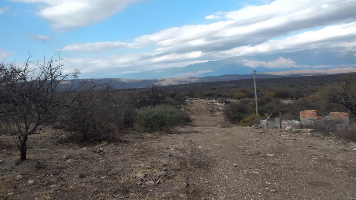 Foto Terreno en Venta en  San Alberto ,  Cordoba  sauce arriba