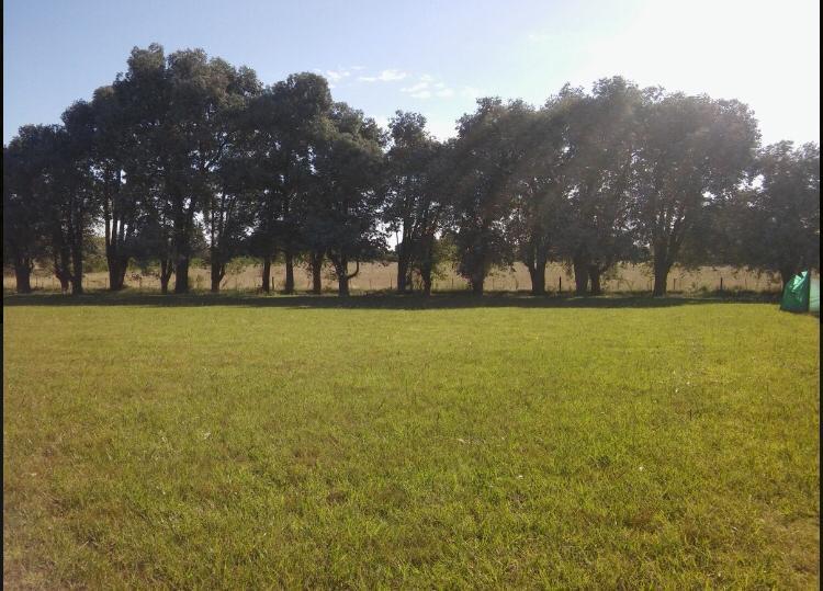 Foto Terreno en Venta en  La Ranita,  Countries/B.Cerrado (Manzanares)  La Ranita