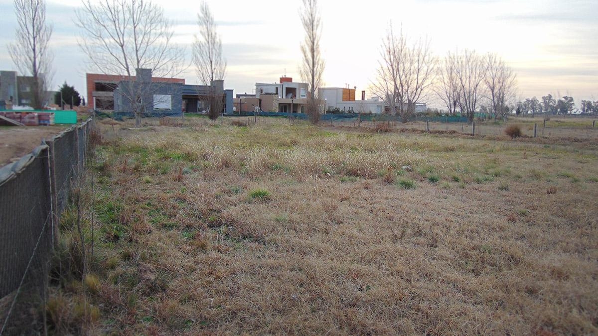 Foto Terreno en Venta en  General Pico,  Maraco  Trisquelia - Lote 8 Qta 4