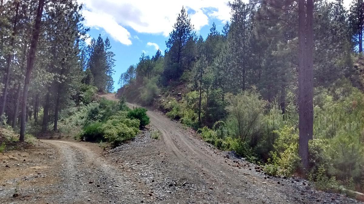 Foto Terreno en Venta en  Epuyen,  Cushamen  Senderos del Epuyen