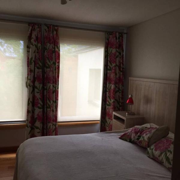 Foto Departamento en Alquiler temporario en  San Martin De Los Andes,  Lacar  Moreno al 700