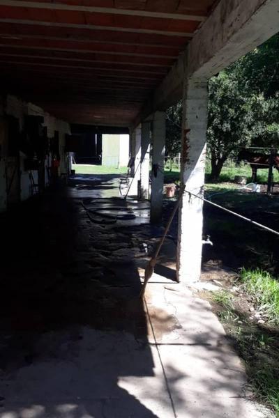 Foto Galpón en Alquiler en  General Belgrano,  General Belgrano  rural al 100