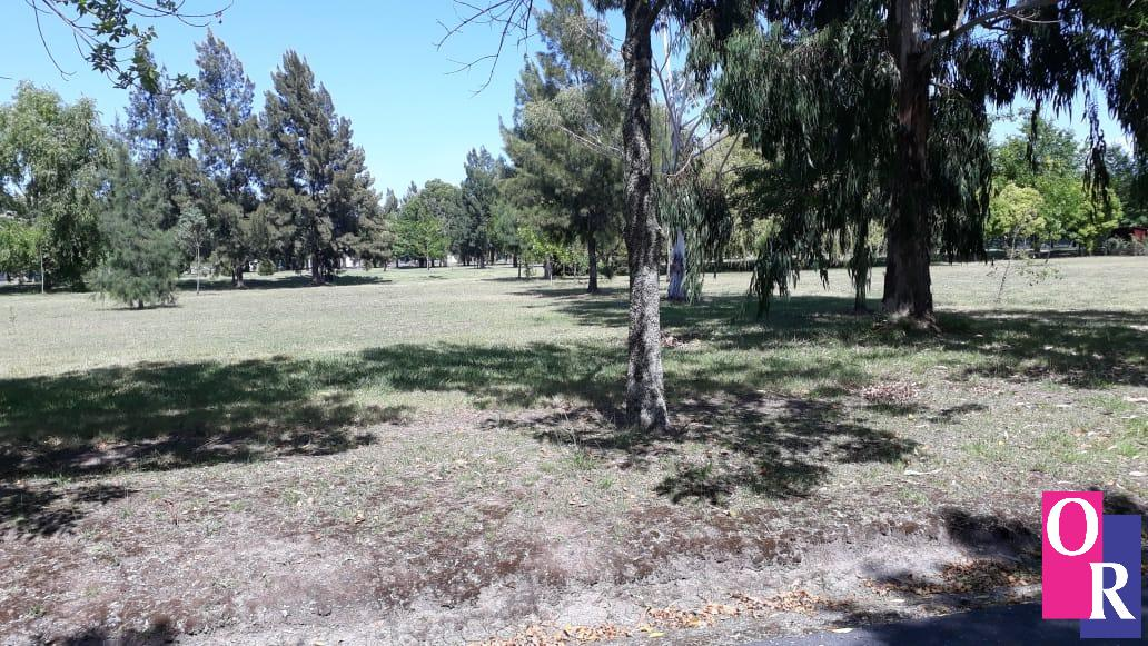 Foto Terreno en Venta en  Abasto,  La Plata  RP2 Km 65 Club Miralagos