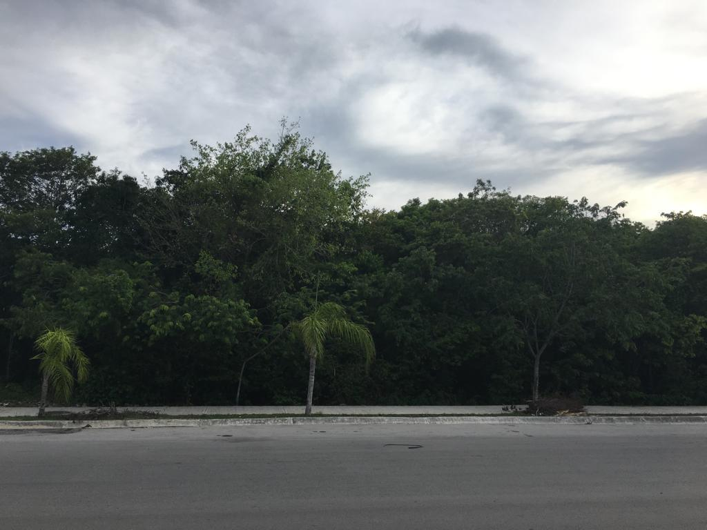 Foto Terreno en Venta en  Solidaridad,  Playa del Carmen  Col Universidades