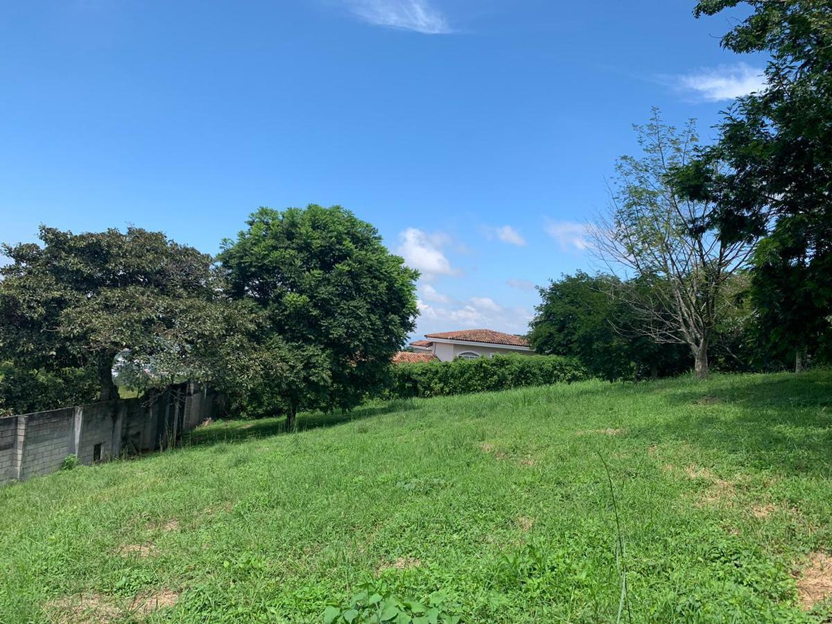 Foto Terreno en Venta en  Pozos,  Santa Ana  Santa Ana / Terreno Plano/ 1.514 metros / Ubicación / Exclusividad