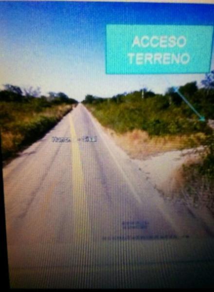 Foto Terreno en Venta en  Hunucmá ,  Yucatán  EXCELENTE INVERSIÓN! 300 HECTÁREAS DE TERRENO EN HUNUCMÁ, YUCATÁN