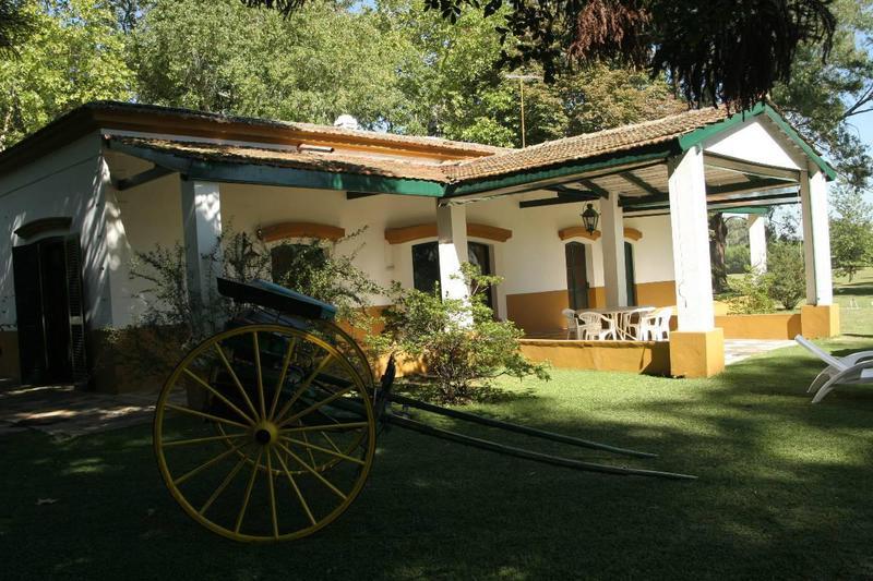 Foto Terreno en Venta en  San Vicente ,  G.B.A. Zona Sur  Barrio cerrado  CAMPO DAROMY