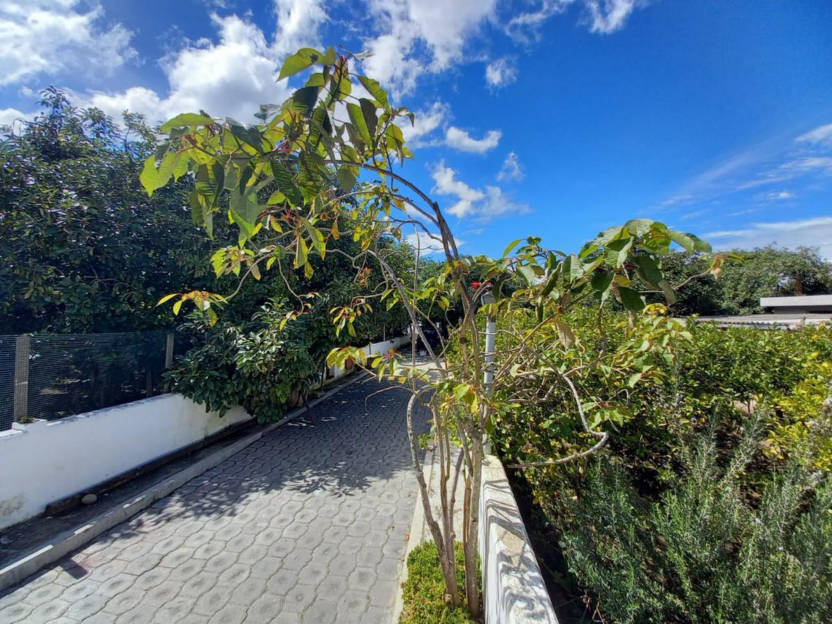 Foto Quinta en Venta en  Guayllabamba,  Quito  GUAYLLABAMBA