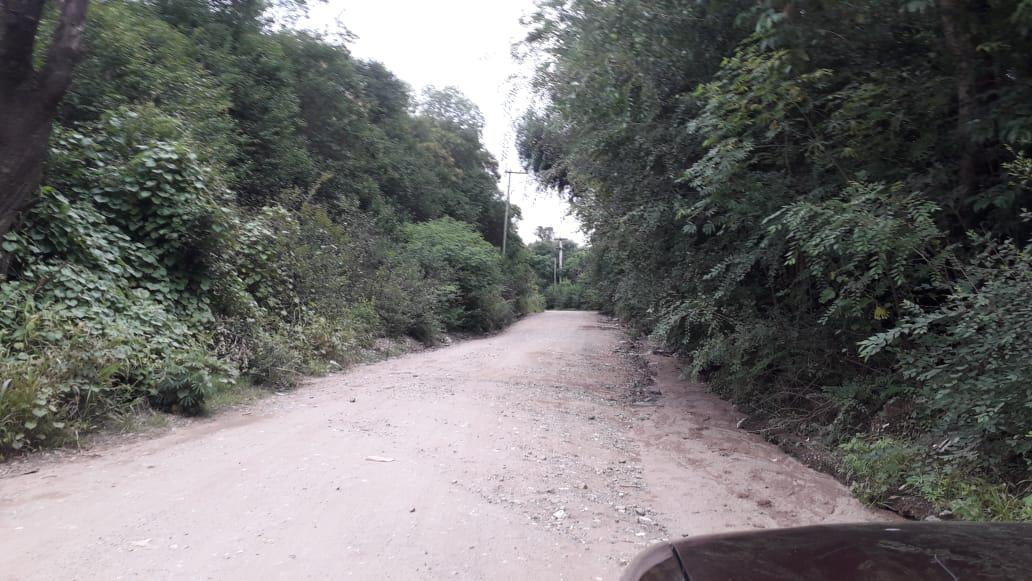 Foto Terreno en Venta en  Salsipuedes,  Colon  TERRENO EN VENTA CERCA DE LA E53 - SALSIPUEDES