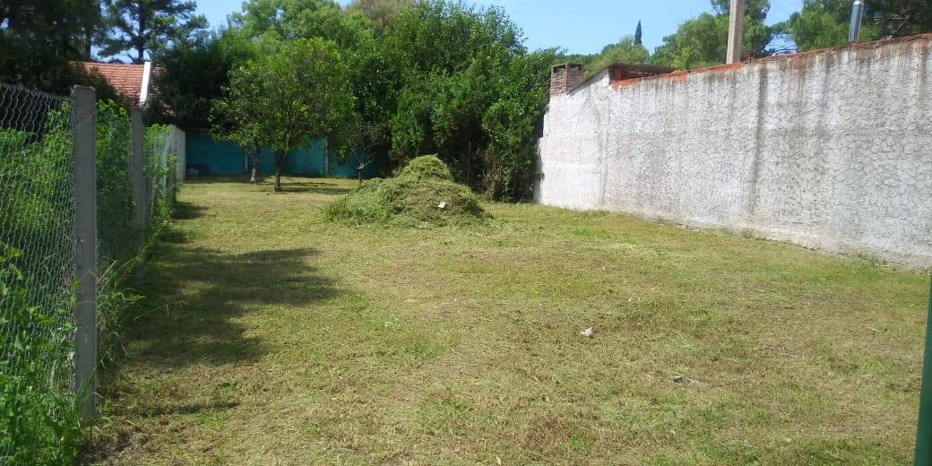 Foto Terreno en Venta en  Jose Clemente Paz,  Jose Clemente Paz  RUTA 8 KM al 100