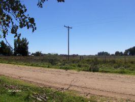 Foto Campo en Venta en  Las Flores ,  Interior Buenos Aires  Las Flores, a 3 Km. de RN°3