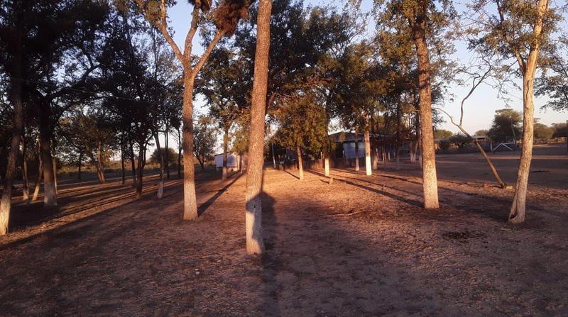 Foto Campo en Venta en  Fuerte Olimpo ,  Alto Paraguay  Fuerte Olimpo