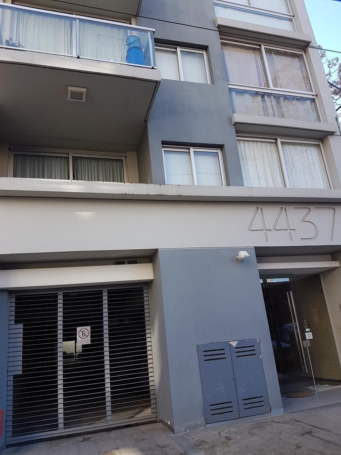 Foto Departamento en Alquiler en  Palermo Hollywood,  Palermo  BERUTTI al 4400