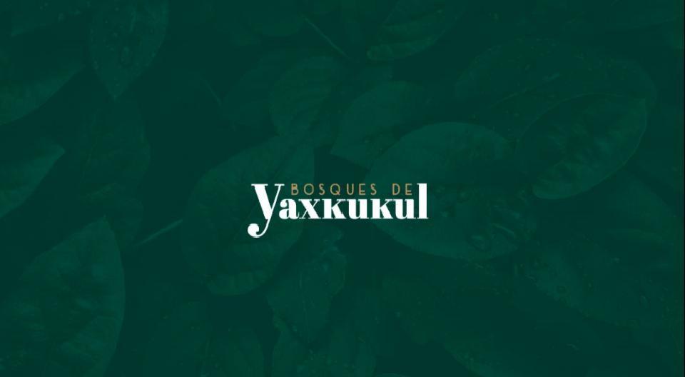 Foto Terreno en Venta en  Pueblo Yaxkukul,  Yaxkukul  Terreno venta en Yaxkukul, Yucatan_terreno urbanizado