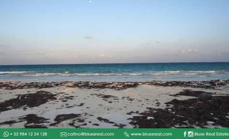 Picture Land in Sale in  Tulum ,  Quintana Roo  Wonderful land by the sea in Boca Paila in Tulum, Quintana Roo | Blues Real | Code 927
