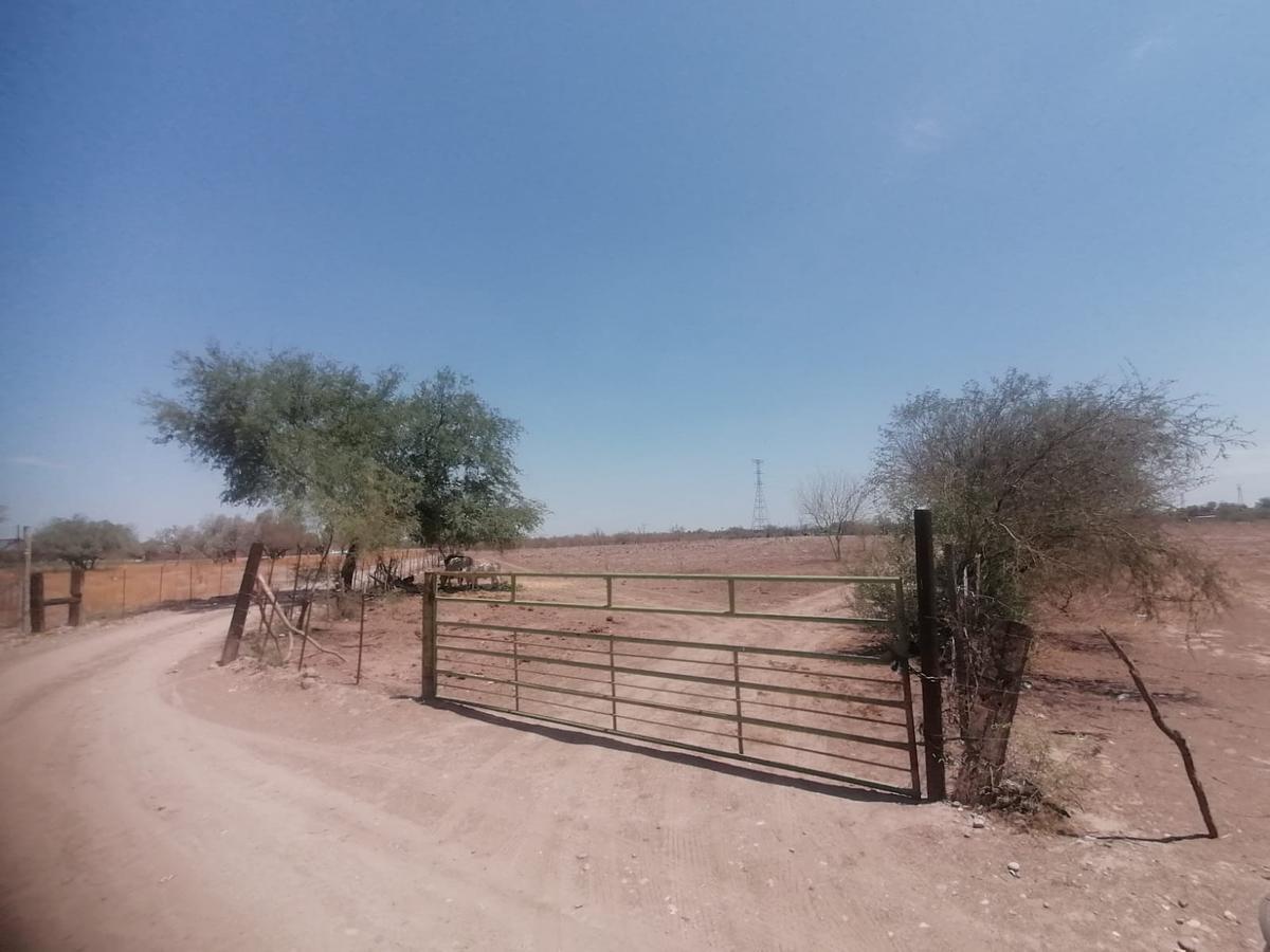 Foto Terreno en Venta en  Ejido Mesa Del Seri,  Hermosillo  VENTA DE PARCELA AGRICOLA EN ZONA DE MESA DEL SERI