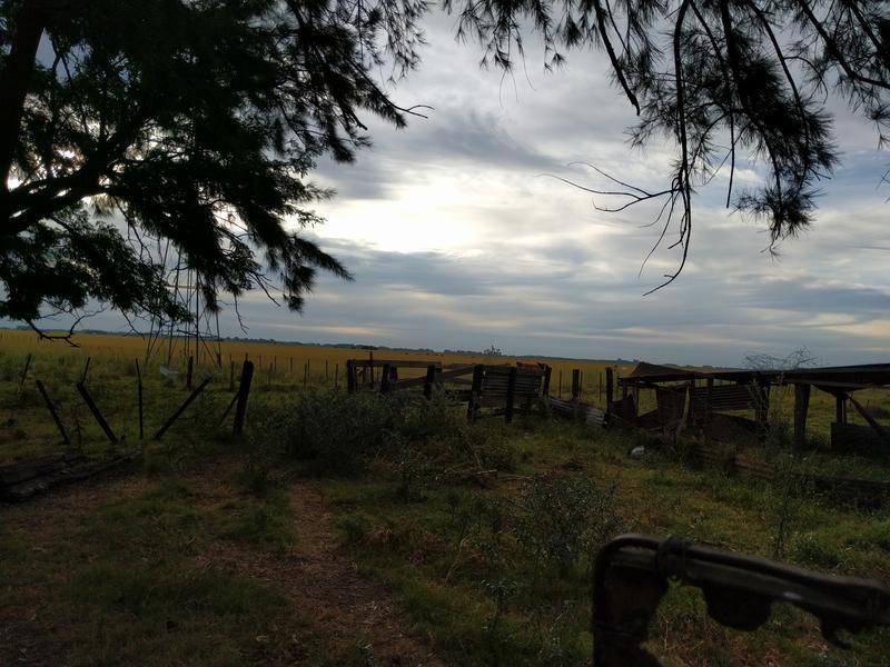 Foto Campo en Venta en  Lujan,  Lujan  San Eladio, 12 Hectáreas