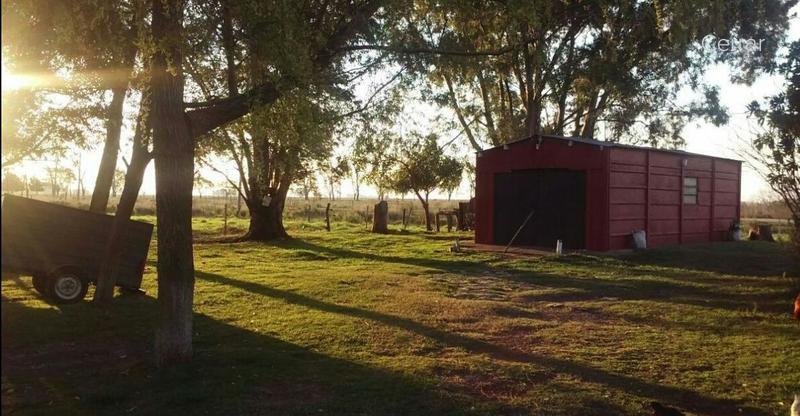 Foto Campo en Venta en  Las Flores ,  Interior Buenos Aires  RP 91 km 71,5
