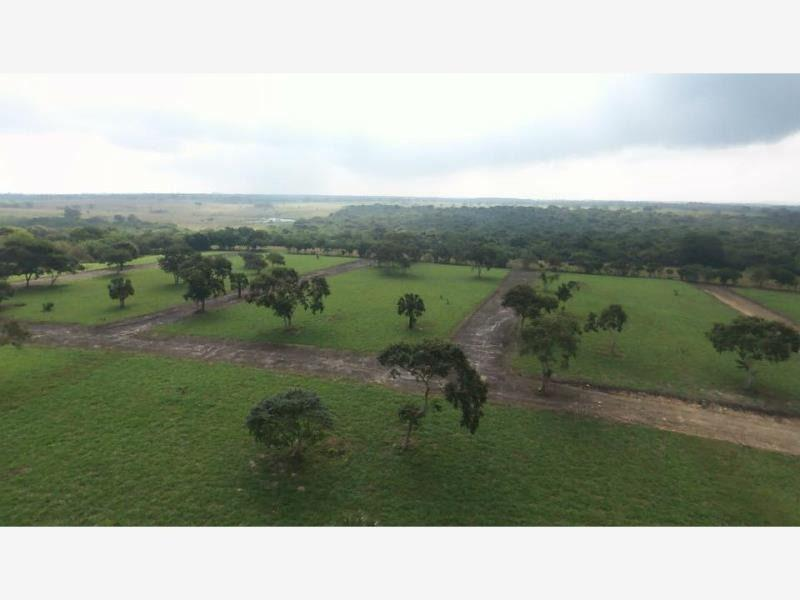 Foto Terreno en Venta en  Tampico Alto Centro,  Tampico Alto  Hermosos Terrenos Campestres en Tampico Alto Veracruz