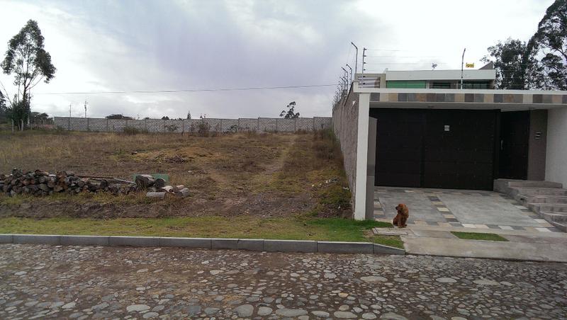 Foto Terreno en Venta en  Puembo,  Quito  Hermoso terreno de 2520 metros en Puembo