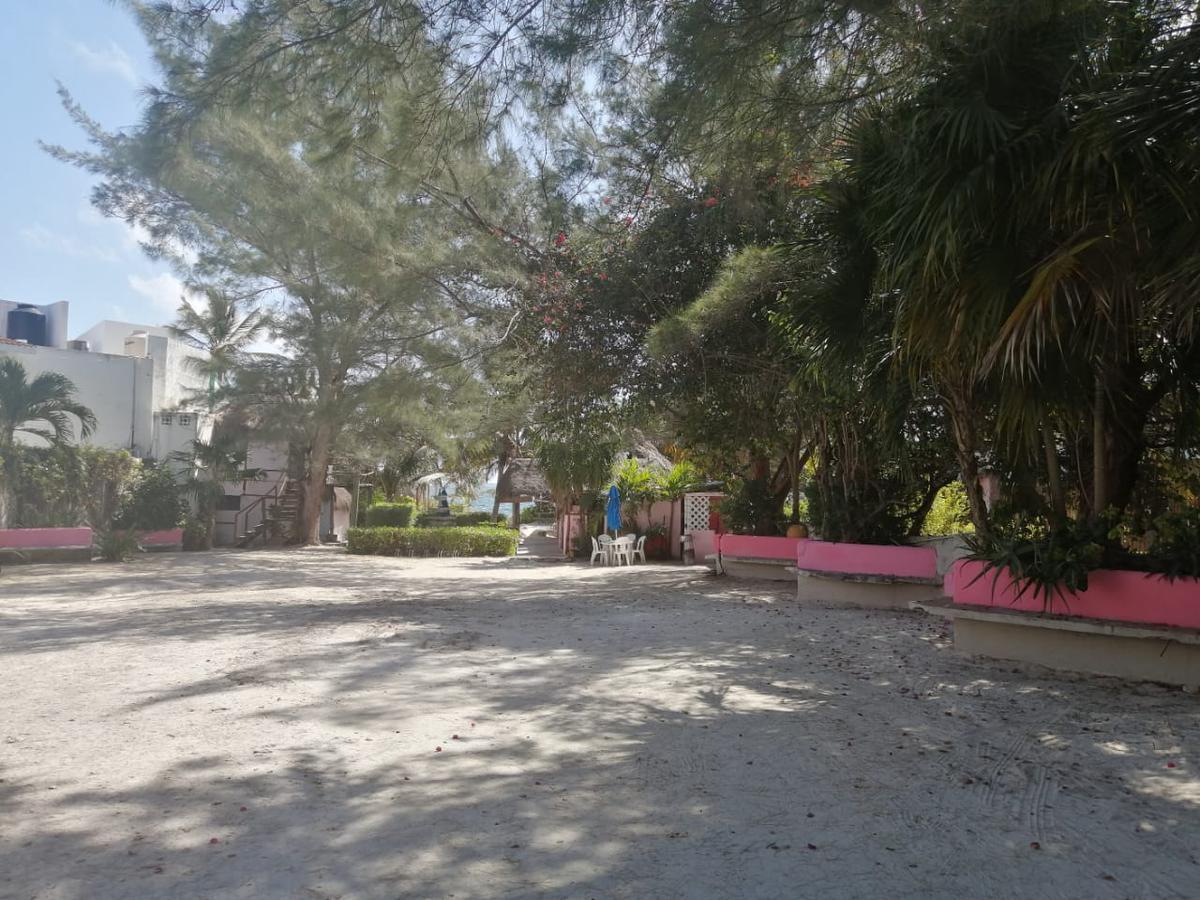 Foto Terreno en Venta en  Puerto Morelos,  Cancún  TERRENO EN VENTA SOBRE LA PLAYA EN  PUERTO MORELOS ZONA HOTELERA