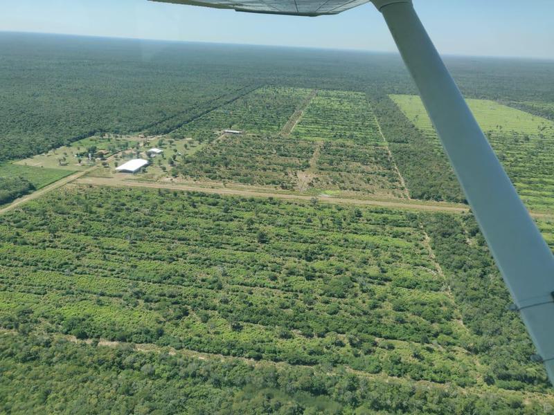 Foto Campo en Venta en  Bahía Negra ,  Alto Paraguay  BAHIA NEGRA, ALTO PARAGUAY.