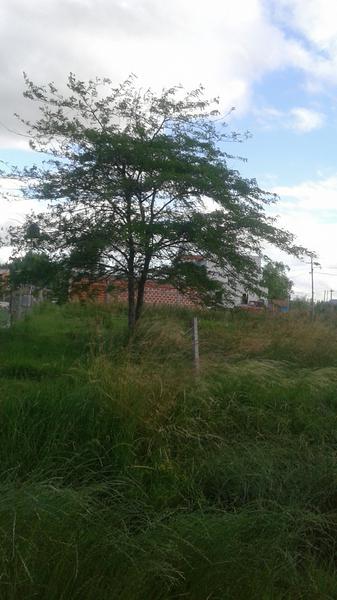 Foto Terreno en Venta en  Cañuelas ,  G.B.A. Zona Sur  SAN MARTIN Y LINIERS