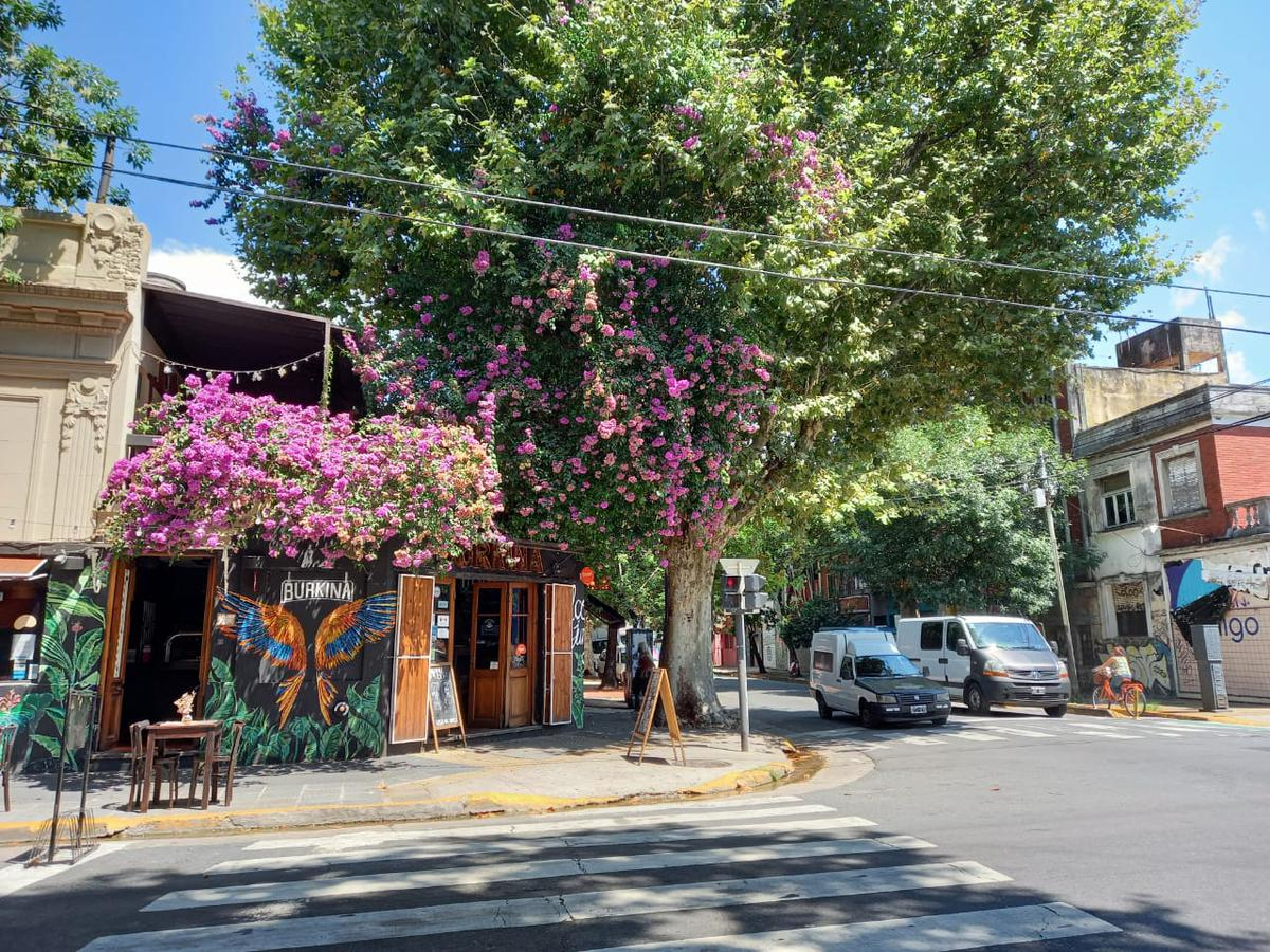 Foto Local en Venta en  Palermo Soho,  Palermo  Honduras al 5200