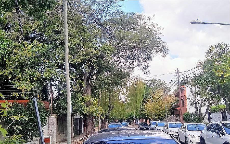 Foto PH en Venta en  Mart.-Vias/Santa Fe,  Martinez  Albarellos 2632-Martinez