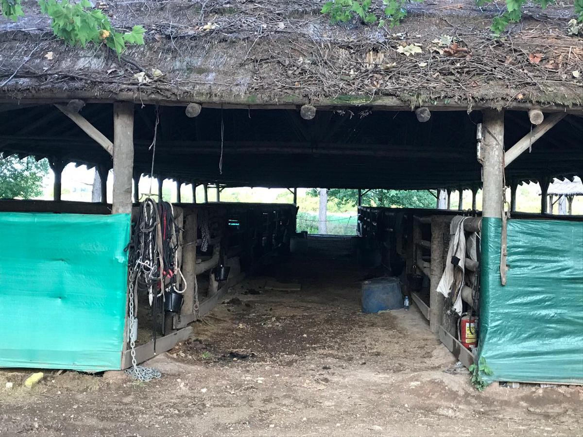 Foto Chacra en Venta | Alquiler temporario en  Manzanares,  Pilar  Villamayor s/n°
