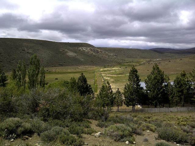 Foto Campo en Venta |  en  Tecka,  Languiñeo  Ruta Nacional 40
