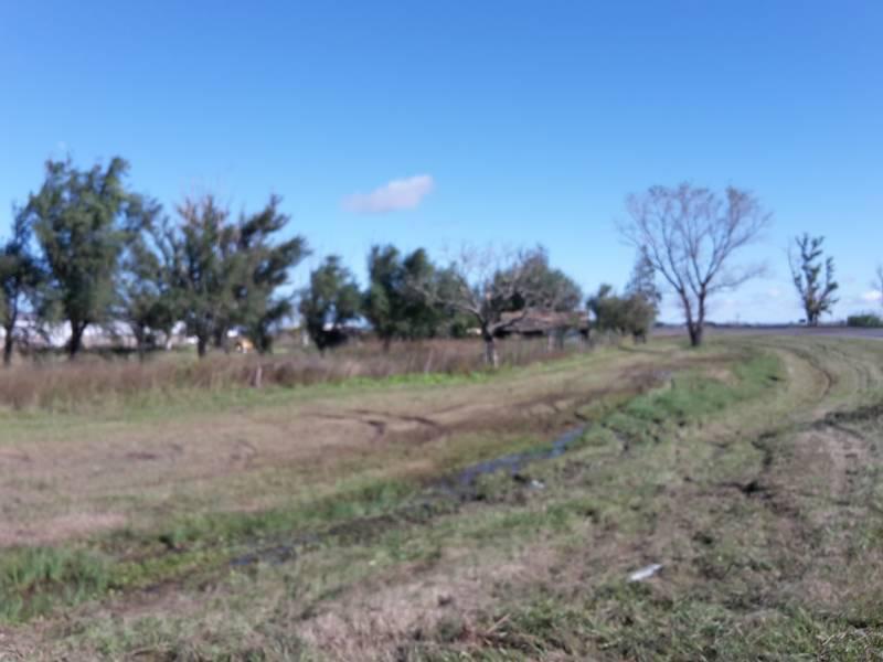 Foto Terreno en Venta en  Luis Palacios,  San Lorenzo  Luis Palacios - Ruta 34 -(L2) Km 22