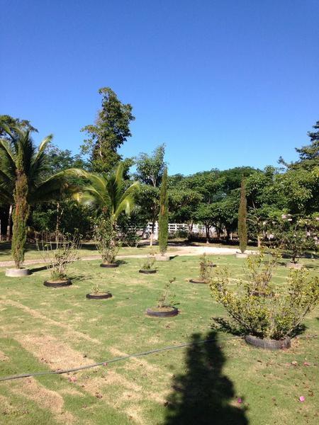 Foto Quinta en Venta en  Puerto Morelos,  Puerto Morelos  Rancho con alberca Ruta de los Cenotes