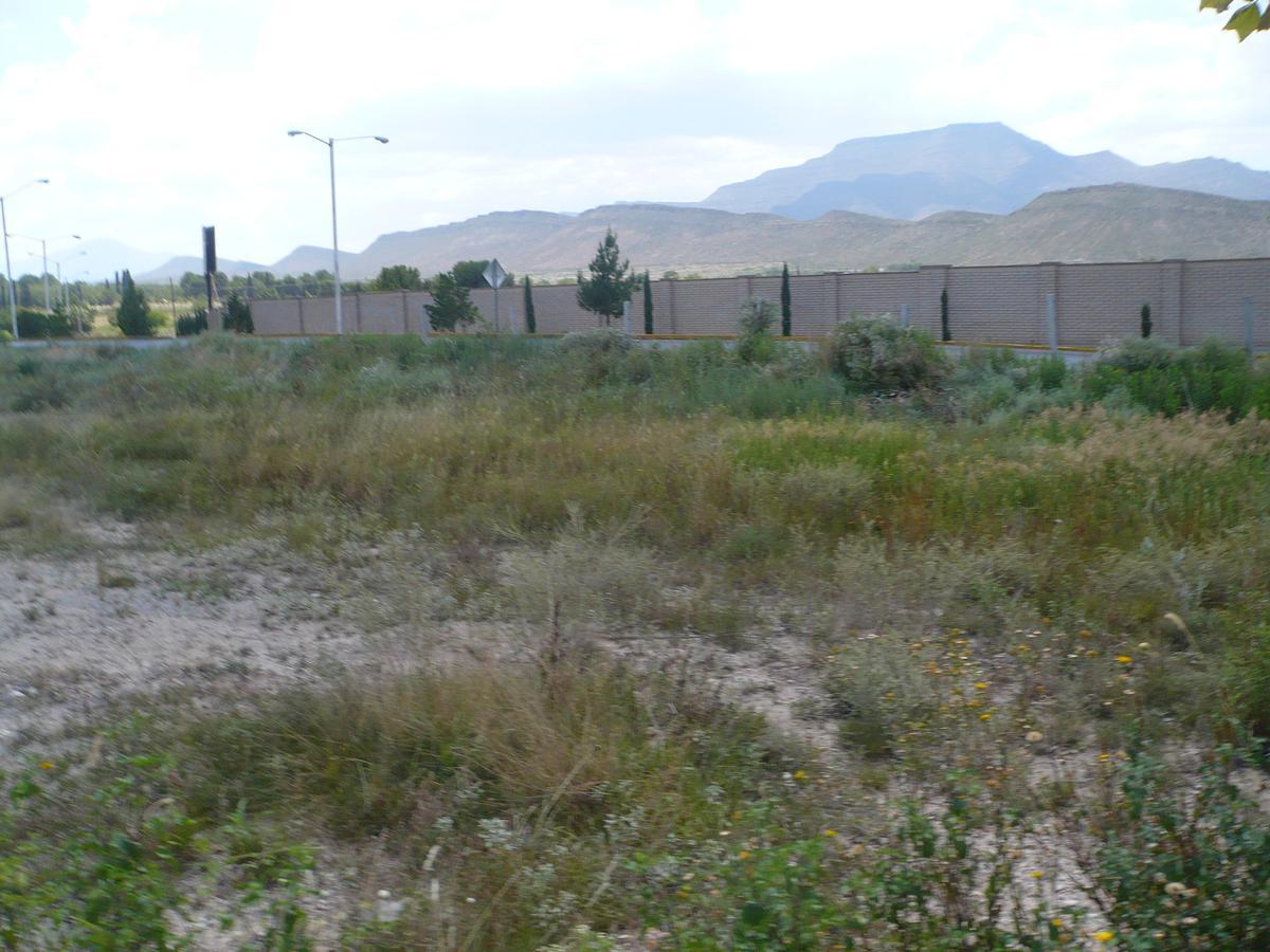 Foto Terreno en Venta en  Parques de La Cañada,  Saltillo  Parques de la Cañada