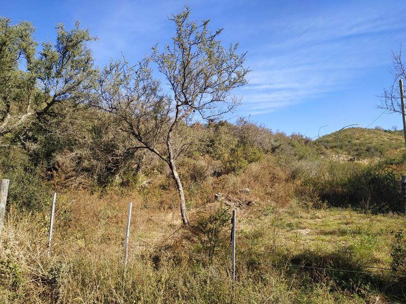 Foto Terreno en Venta en  Tiro Federal,  Alta Gracia  Terreno en Tiro Federal